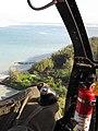 Starr-091112-9607-Hibiscus tiliaceus-aerial view-Kanaha Beach-Maui (24359110724).jpg