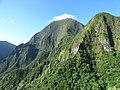 Starr-151005-0057-Aleurites moluccana-aerial view-West Maui-Maui (26009658450).jpg