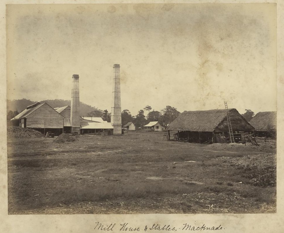 StateLibQld 1 235370 Mill house and stables on the Macnade Sugar Plantation, Ingham, ca. 1881