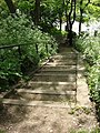 Steps between Parkland Walk and Upper Tollington Park - geograph.org.uk - 1593109.jpg