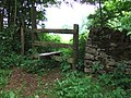 Stile, Lineover Woods - geograph.org.uk - 181256.jpg