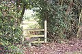 Stile on High Weald Landscape Trail - geograph.org.uk - 1499201.jpg