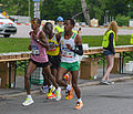 Stockholm Marathon 2013 14.jpg