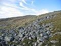 Stonefields, Meall na h-Eilde. - geograph.org.uk - 68256.jpg