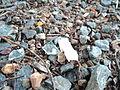 Stones Scattered.JPG