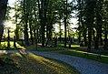 Strašnický hřbitov cesta 2.jpg