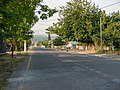 Street, Oguz (P1090484).jpg