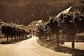 Street in Fribourg, Switzerland.jpg