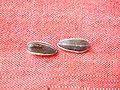 Sunflower seeds on red tablecloth.jpg