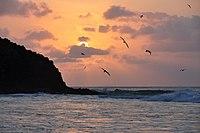 Sunset at Noronhas' beach.jpg
