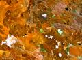 Sur de Bolivia y Norte de Argentina satellite map 67.21799W 22.41006S.png