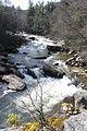 Swallow Falls State Park 20.JPG