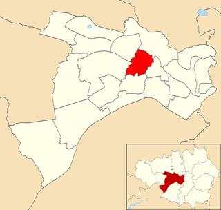 Swinton South (ward) Electoral ward in England