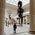 T. Rex at NOMA.jpg