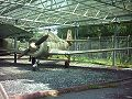 TS-8 Bies RB.jpg
