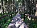 """Tatry - droga do """"Morskiego Oka"""" - Tatras - way to """"Morskie Oko"""" lake - panoramio.jpg"""