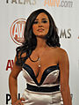 Taylor Vixen at AVN Awards 2011 3 (crop).jpg