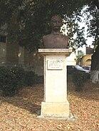 Teodor V. Ştefanelli2