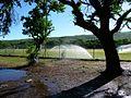 Terrains de foot à La Saline (3400791504).jpg
