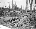 The Battle of the Somme, July-november 1916 Q4353.jpg