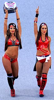 The Bella Twins Professional wrestling team