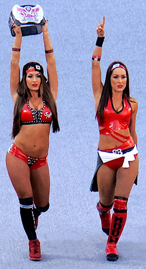 The Bella Twins - Nikki (left) and Brie (right) in March 2015
