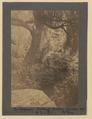 The Fisherman, Butcharts Gardens, Victoria, British Columbia (HS85-10-42131) original.tif
