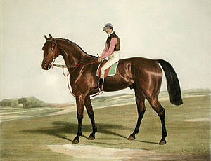 The Merry Monarch - The Merry Monarch with jockey Foster Bell. Painting by Francis Calcraft Turner.