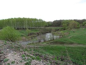 The Mitkirey river near Bekovo railway bridge 1.JPG