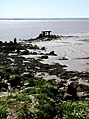 The River Humber - geograph.org.uk - 425356.jpg