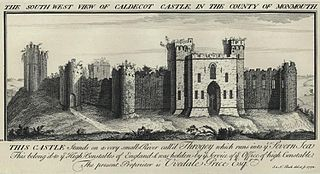 The South West View Of Caldicot Castle, In The County Of Monmouth