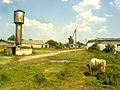 The farm - panoramio - Oleg Seliverstov.jpg
