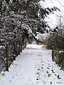 The footpath to Tucks Lane in the snow - geograph.org.uk - 459431.jpg