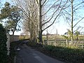 The lane to Elverton alongside the Old Rectory - geograph.org.uk - 1058802.jpg