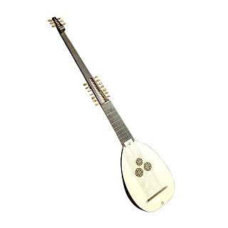 plucked string instrument
