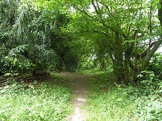 Thursford Wood human settlement in United Kingdom