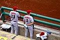 Tigers Teammates (14387649210).jpg