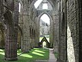Tintern Abbey, South Wales - geograph.org.uk - 1776225.jpg