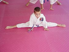 Stretching to increase flexibility is an important aspect of taekwondo training.