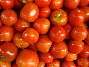 Bahasa Indonesia: Buah Tomat