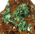 Torbernite-Limonite-239658.jpg