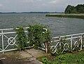 Torgau Grosser Teich.jpg