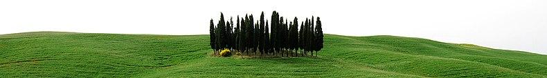 Paesaggio tipico