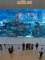 Tourism in Dubai توریست ها در کشور امارات، شهر دبی 04.jpg