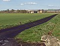 Towards Common Farm, near Newport - geograph.org.uk - 745071.jpg