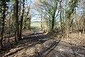 Track to Fields, off Ellenwhorne Lane - geograph.org.uk - 1752116.jpg