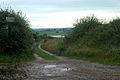 Track to Mickledale Cottage - geograph.org.uk - 1440275.jpg