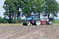 Tractor P1140796.jpg