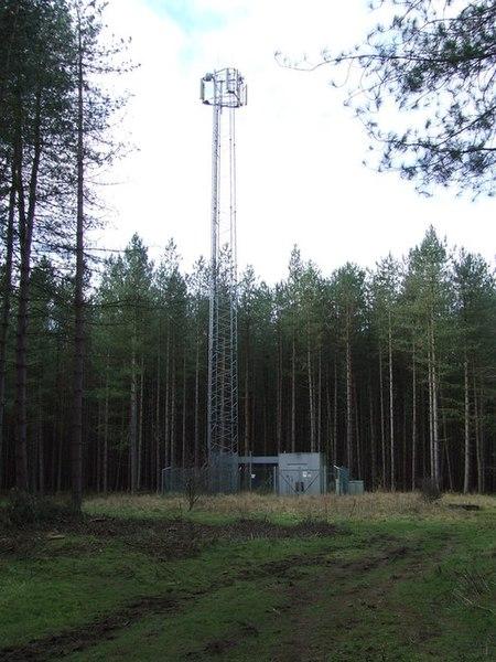 File:Transmitter Mast - geograph.org.uk - 1142883.jpg