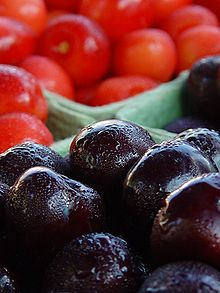 http://upload.wikimedia.org/wikipedia/commons/thumb/1/1f/Traverse_cherries.jpg/220px-Traverse_cherries.jpg